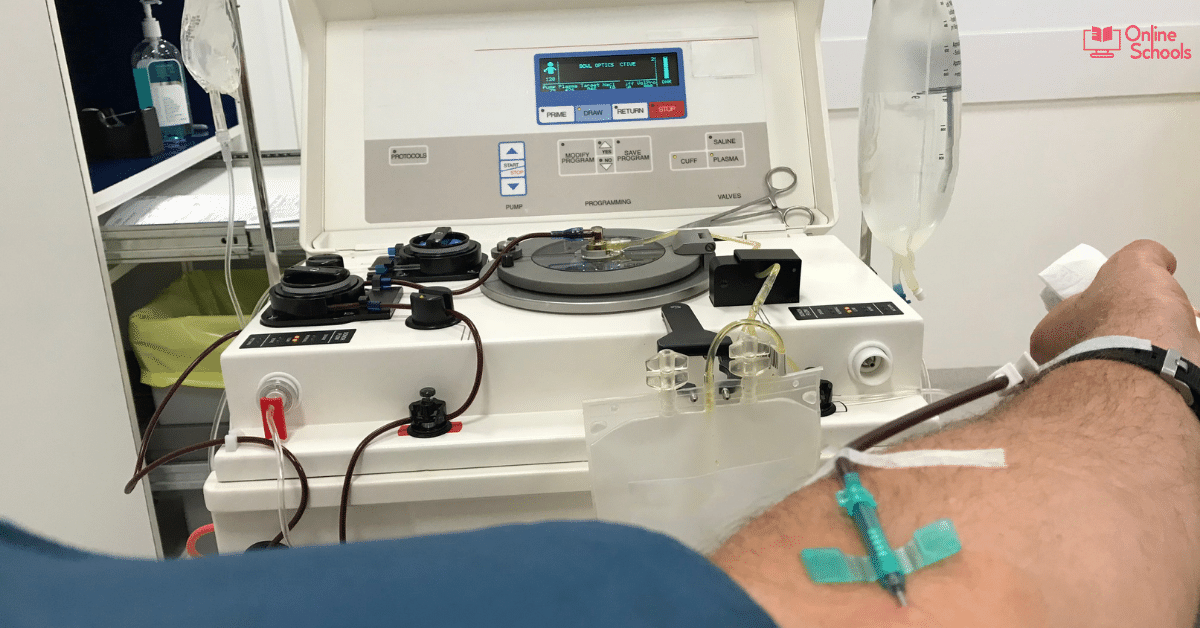 Plasma Donation Compensation – Importance & Learning Ideas
