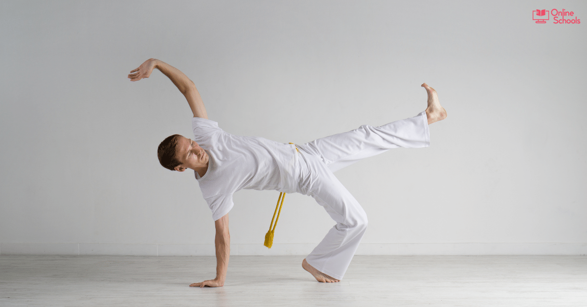 Brazilian Martial Arts – A Discussion On One Of The Best Art Form